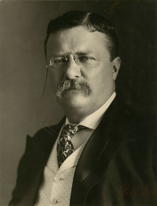 theodore roosevelt as a moderate Sagamore hill was the home of theodore roosevelt, 26th president of the united states, from 1885 until his death in 1919 during roosevelt's time in office, his summer white house was the focus of international attention.